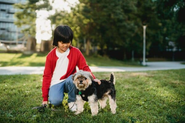 Fundraising for animal shelters - pets and kids